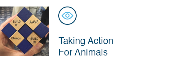 Taking Action For Animals