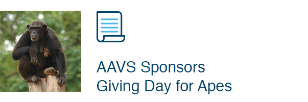 AAVS Sponsors Giving Day for Apes