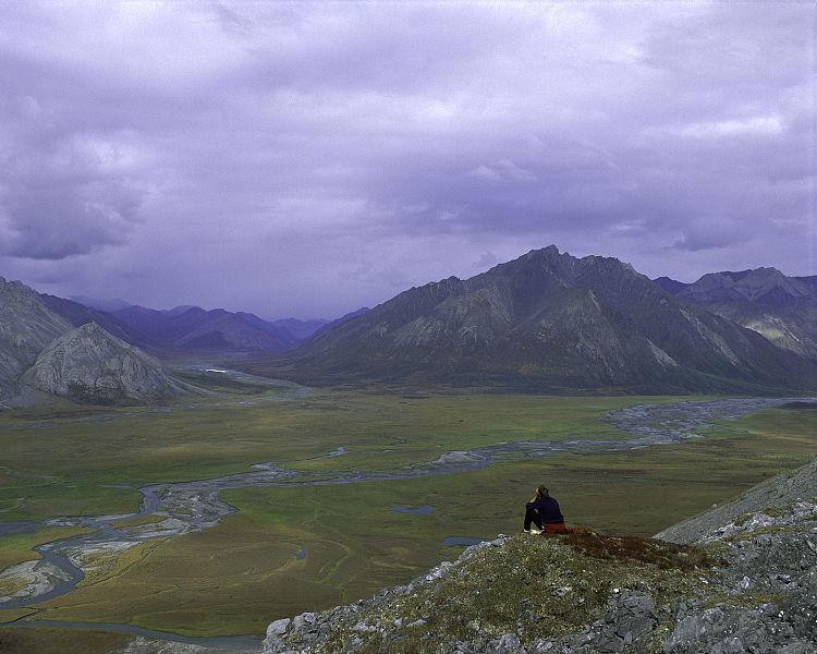 If the Arctic Refuge isn't protected, no public land is safe