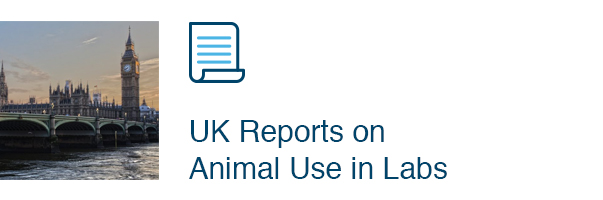 UK Reports on Animal Use in Labs