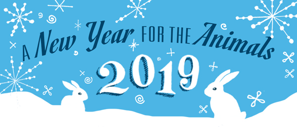 A New Year for the Animals