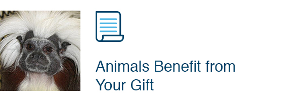 Animals Benefit from Your Gift