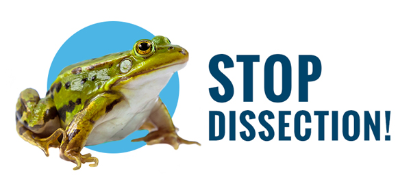 Stop Dissection in CA