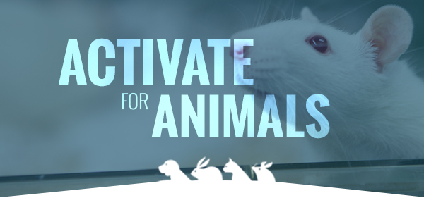 Activate for Animals
