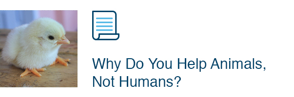 Why Do You Help Animals, Not Humans?