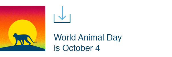 World Animal Day is October 4th