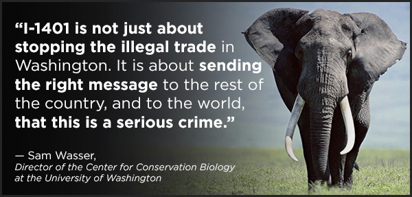 """""""I-1401 is not just about stopping the illegal trade in Washington. It is about sending the right message to the rest of the country, and to the world, that this is a serious crime."""" ~ Sam Wasser, Director of the Center for Conservation Biology at the University of Washington"""