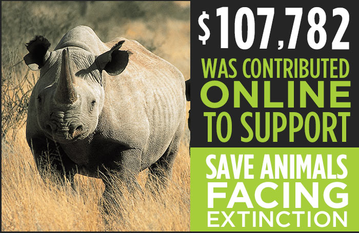 $107,782 was contributed online to support Save Animals Facing Extinction