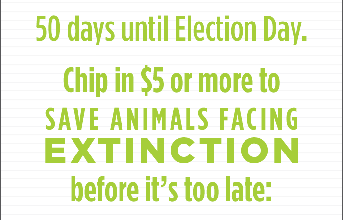 50 days until Election Day. Chip in $5 or more to Save Animals Facing Extinction before it's too late: